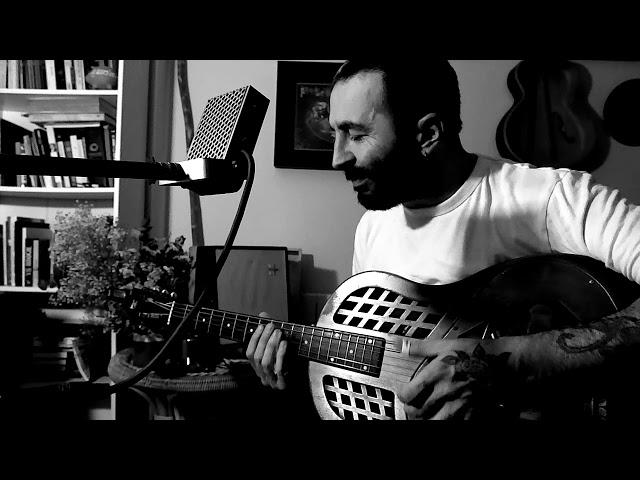 Moth Mic FV - Delta Blues Demo (Néstor Pardo)