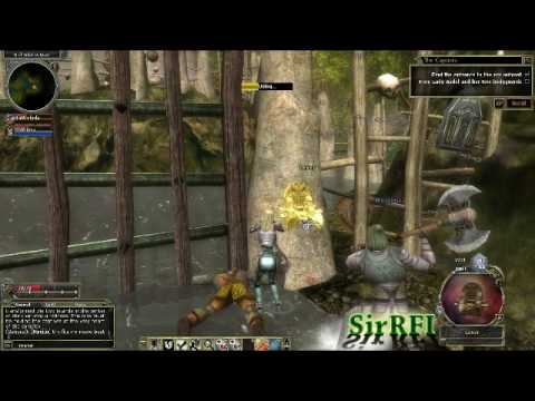 Dungeons & Dragons Online [DDO] - gameplay