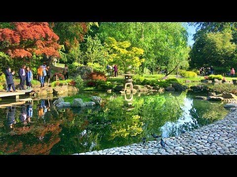 Holland Park (incl. Kyoto Garden) - Walking in London