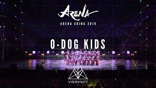 [1st Place] O-DOG | Arena China Kids 2019 [@VIBRVNCY 4K]