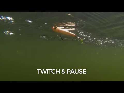 Swimming Action: Storm Chug Bug