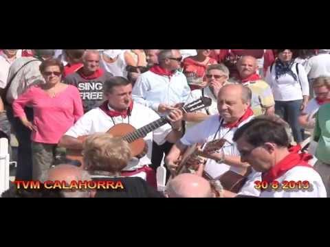 CALAHORRA TVM  30 8 2013 CONCENTRACION Y OFRENDA FLORAL