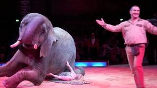 Circus Krone 2012: Premiere 1. Winterspielzeit am 25.12.2011
