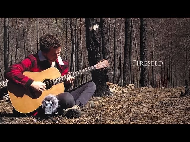 Fireseed - Bob Smeenk (Travel Sessions)