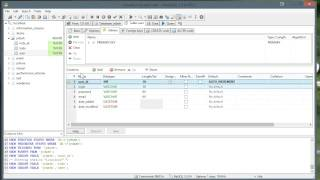 10. Creating a Database with Heidi SQL (Optional)