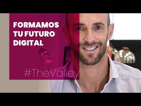 Ecosistema The Valley