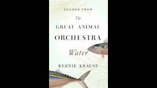 THE GREAT ANIMAL ORCHESTRA by Bernie Krause: Water Sounds