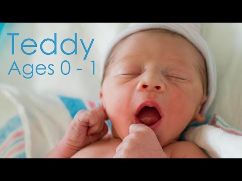 Teddy Ages 0 - 1 | Bon Appétempt | PBS Digital Studios