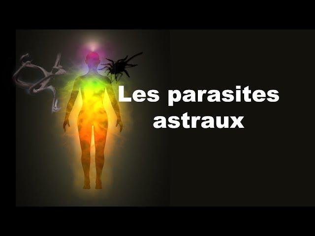 Magnétiseur en Bretagne: les nuisances dernière partie: les parasites
