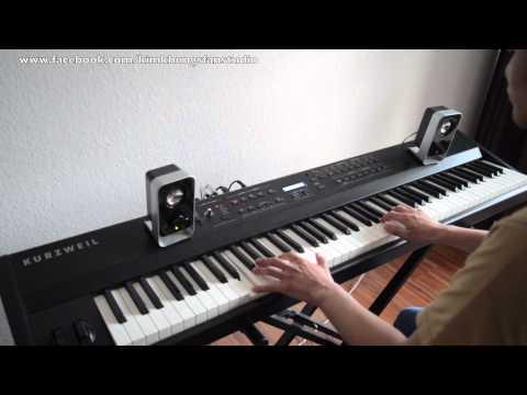 พยายาม(Piano Covered by Kim)