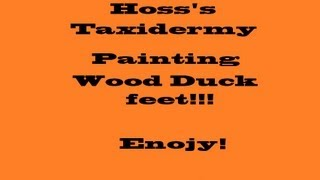 Painting wood duck feet