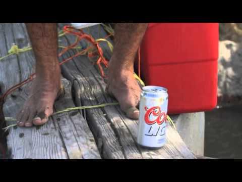 Steven Christie - Beer Buz