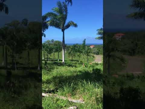 G-841 Ocean View Lot Sosua, Dominican Republic