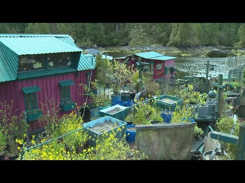 Freedom Cove: B.C. couple lives on nature-inspired floating island