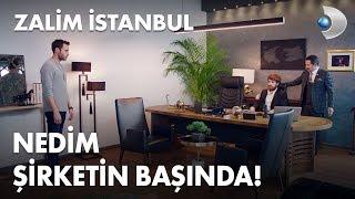 Nedim'i patron koltuğunda gören Cenk yıkılıyor! - Zalim İstanbul 15. Bölüm