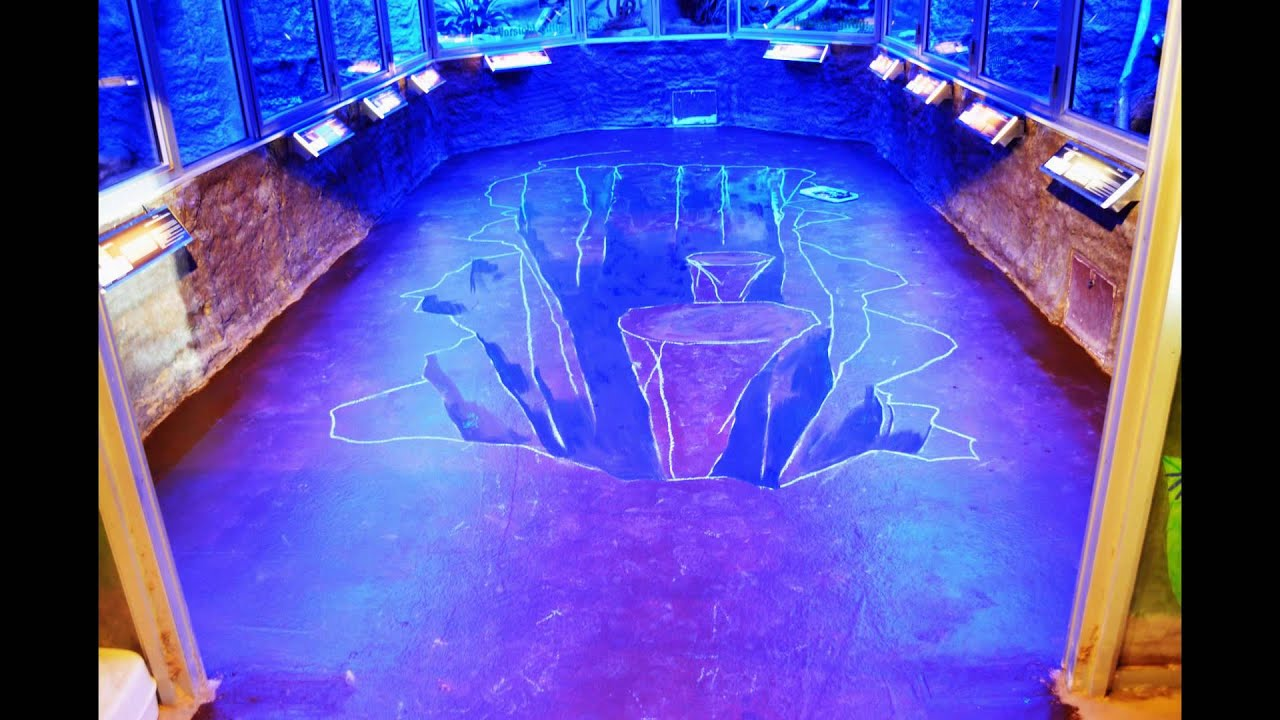 Nachthaus reptilium landau 3d bodenmalerei youtube for Boden 3d bilder