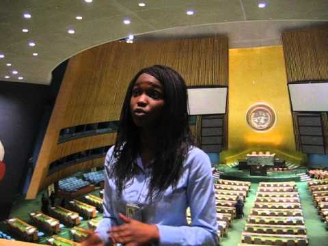 Guided tour in UN building in New York General Assembly New York
