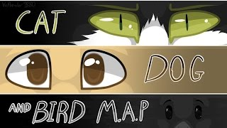 The adventure of a cat dog and bird - Storytelling MAP