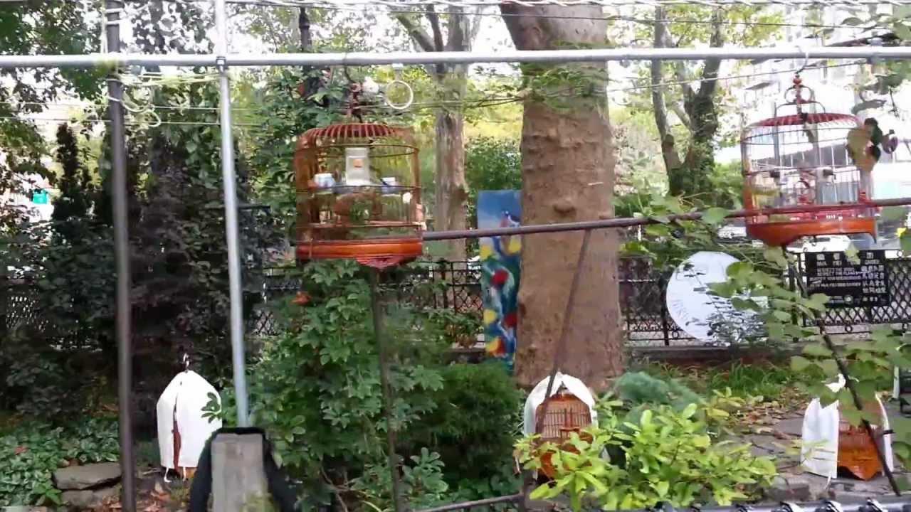 hua mei bird garden - Mei Garden