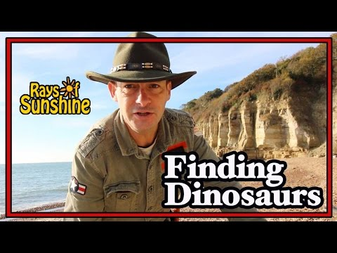 Finding Dinosaur Footprints On The Beach (64)