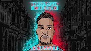 MiZeb - THERAPIE EP (SNIPPET) prod. by joezee & co.