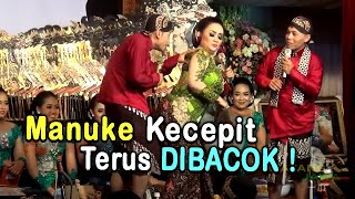 Download Video CAK PERCIL CS & KI SUN GONDRONG - 22 OKTOBER 2018 DI SURODAKAN TRENGGALEK MP3 3GP MP4