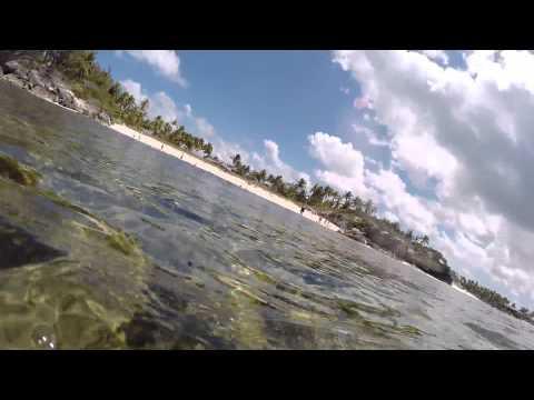 Bahama Private Island Snorkling