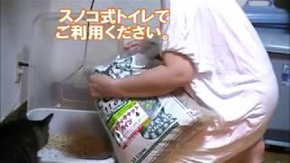 完全無添加オーガニック 食べても大丈夫な究極の猫砂です。 原材料であ...