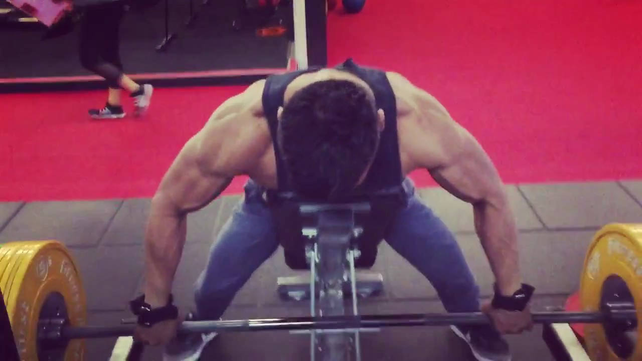 BACK DAY: Upper Back focus