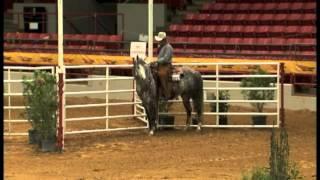 2013 aqha verstality ranch horse amateur world champion