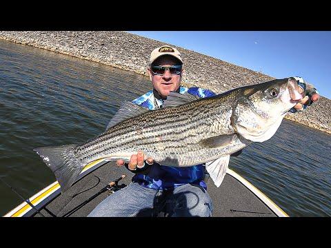 FOX Sports Outdoors SouthEAST #21 - 2019 Watts Bar Tennessee Striper Fishing
