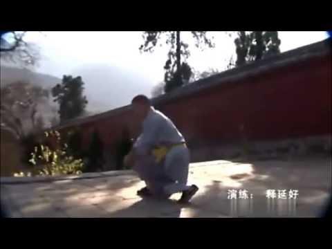 "Shaolin Luo Han Quan ""Η γροθιά του διαφωτισμένου"" Λούο Χαν Τσουάν 罗汉拳"