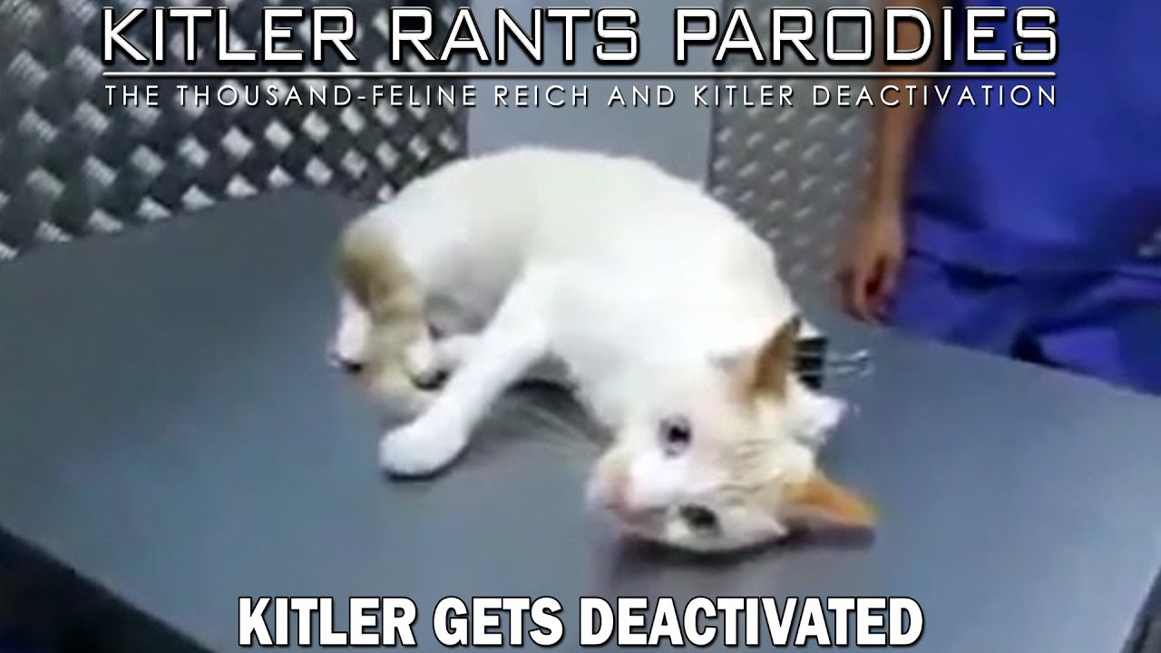 Kitler gets deactivated