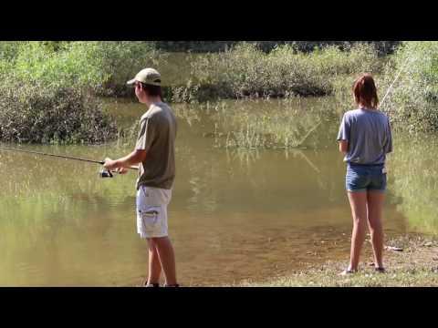 Health Warning at Local Lakes