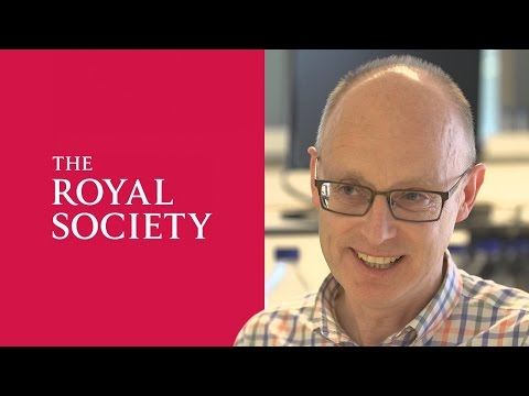 UCD Professor Kenneth Wolfe elected Fellow of the Royal Society
