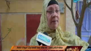 على هوى مصر - منطقة الأخلاص بالهرم .. حي سكني وسط القمامة وجثث الحيوانات النافقة