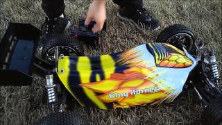king hornet 1 5 scale brushless rc buggy