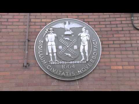 Bedford Stuyvesant Collegiate Charter School