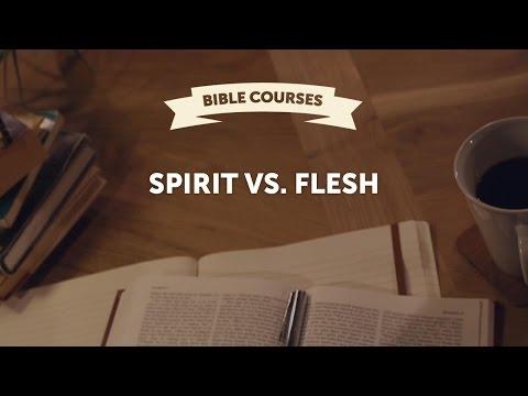 Spirit vs. Flesh, Galatians - Miki Hardy (11/13)
