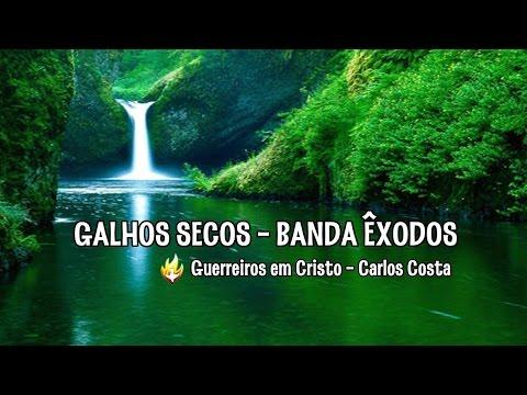 GALHOS SECOS - PARA NOSSA ALEGRIA   ( * LEGENDADO * )