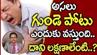అసలు గుండెపోటు ఎందుకు వస్తుందో తెలుసా..? I Heart Attack Causes & Symptoms I Everything in Telugu