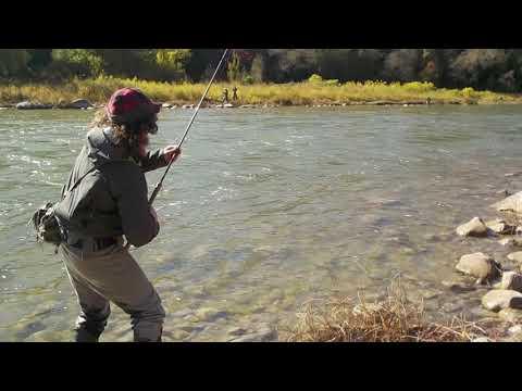 Steelhead Fishing The Saugeen River October / Steelhead Monologues 2020 Pt.1