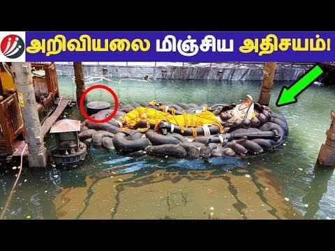 அறிவியலை மிஞ்சிய அதிசயம்!    Tamil Facts   Latest News   Tamil Seithigal