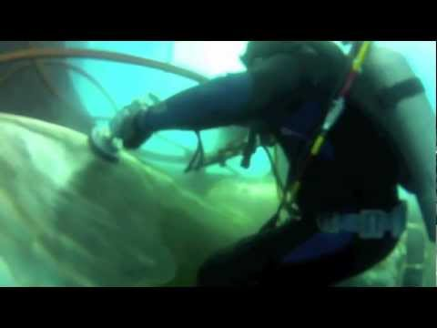 Ship Underwater Propeller Cleaning and Polishing