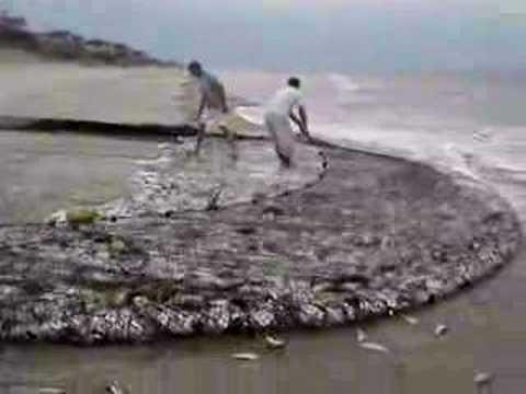 Obx net fishing 2 youtube for Drag net fishing