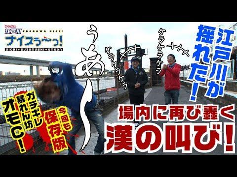 ボートレース【ういちの江戸川ナイスぅ〜っ!】#018 場内に再び轟く漢の叫び!