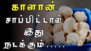 Top Health Benefits of mushroom in Tamil | Mushroom Benefits in Tamil | Kalan nanmaigal | காளான்