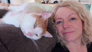 Steve becomes a tripod cat