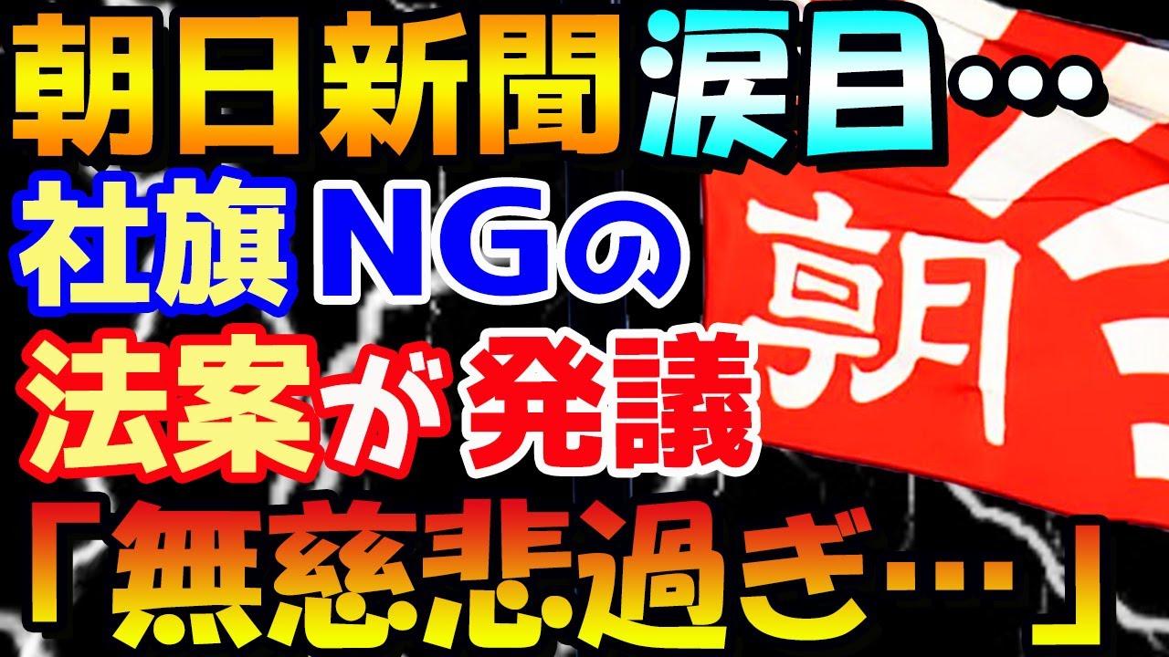 【韓国の反応】親日派粛清法案が韓国で発議!海上自衛隊を法的に締め出せる法案に韓国人大喜び「早期成立を」「この法案には反対。反日デモで何を掲げればいいのですか?」