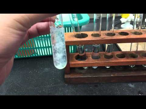 Cation Test: Zinc Ions